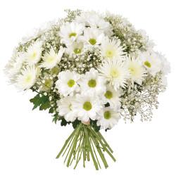 CORSICA FUNERAL FLOWERS PENSÉE
