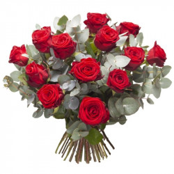 DOM-EXO RED ROSES BOUQUET