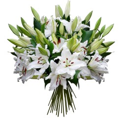 FLOWERS BOUQUET TENDRES LYS