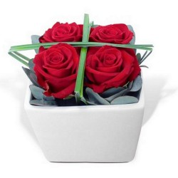 FLOWERS COMPOSITION ROSES GRAPHIQUES
