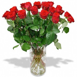 copy of RED ROSES...