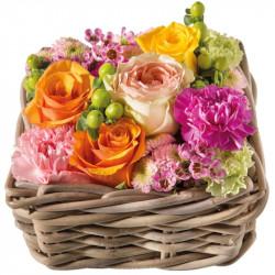 CORSICA FLOWERS COMPOSITION BALI