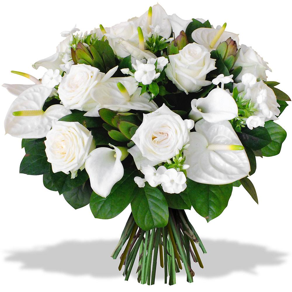 Fleurs pour St Barthélémy