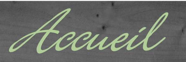 ACCUEIL FAIRE LIVRER DES FLEURS PECHBUSQUE