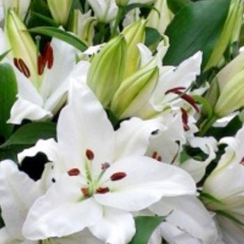 bouquet TENDRES LYS